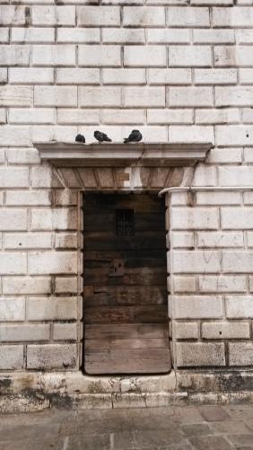 door birds
