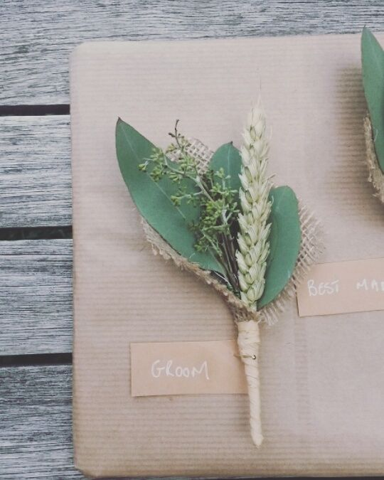 wheat groom
